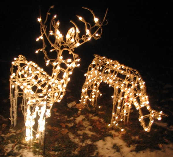 Outdoor lighted grapevine reindeer car pictures memes